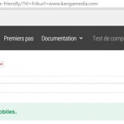 Compatibilite Google Mobile Friendly
